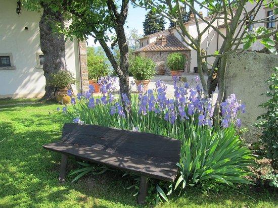 Villa Campestri Olive Oil Resort : Garden