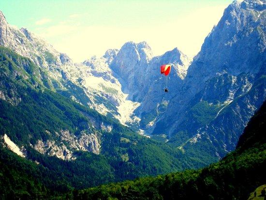 Alpe Sport Vancar