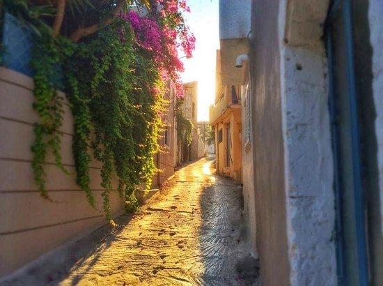 Villa Kallergi: Villas Kallergis Crete - view of the village alley