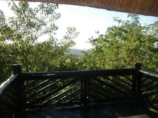 Hilltop Camp : Begroeid uitzicht vanuit het balkon van huisje 33, april 2014