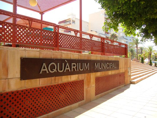Acuario Municipal de Santa Pola (Aquàrium Municipal)
