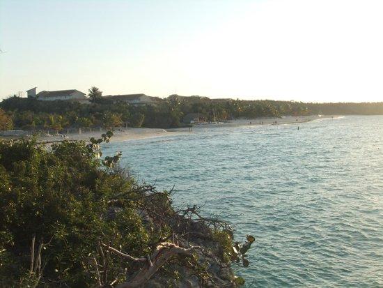 Paradisus Rio de Oro Resort & Spa: Views