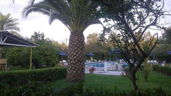 Livadi Nafsika Hotel: vers la piscine