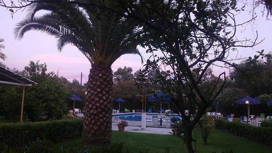 Livadi Nafsika Hotel: vue sur la piscine le soir