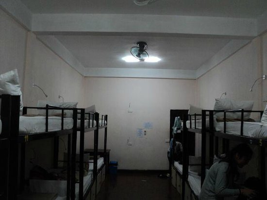 Funky Monkey Hostel : Room