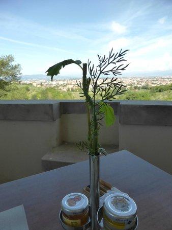 Villa Tolomei Hotel and Resort : Plastikblume ohne Blüte