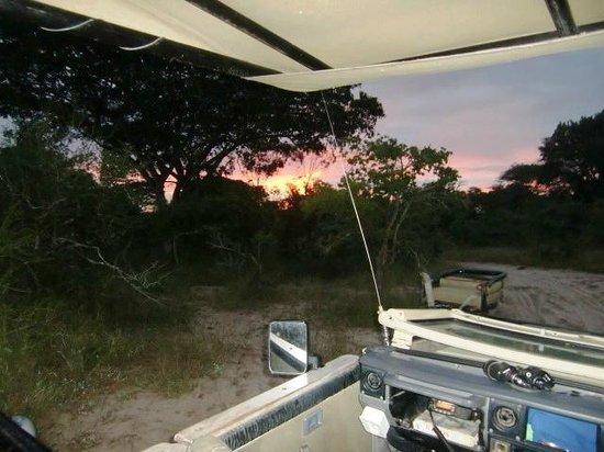 Tembe Elephant Park Accommodation: Zonsopkomst bij de ochtendsafari in Tembe, april 2014