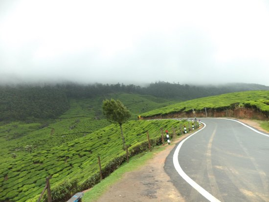 Musafir Day Tours: On the Way to Munnar