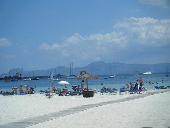 Mariner Club: the beach