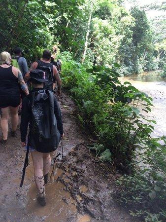 Outfitters Kauai: ぬかるんだ道のり