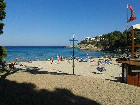 Beach Club Font de Sa Cala: plage font de la cala partagée avec 2 autres hôtels