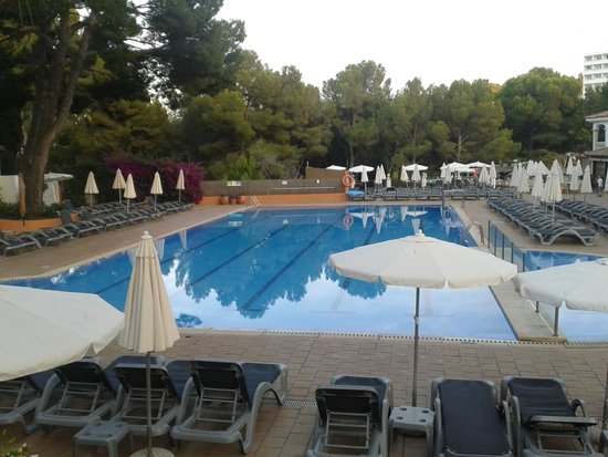 Beach Club Font de Sa Cala: piscine animation