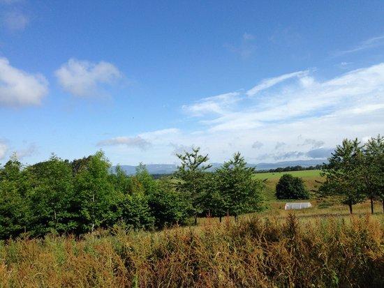 Duchally Country Estate : Stunning