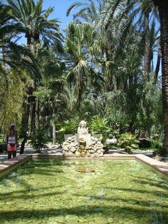 7 trunked palm - Foto di Huerto Del Cura Jardin Artistico Nacional, Elche - T...