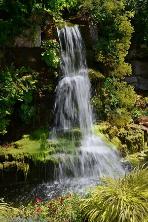 Ness Botanic Gardens: Waterfall