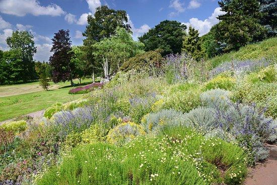 Ness Botanic Gardens: View over the heather garden
