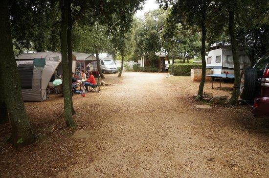 Camp Ulika Rovinj: Camping slots