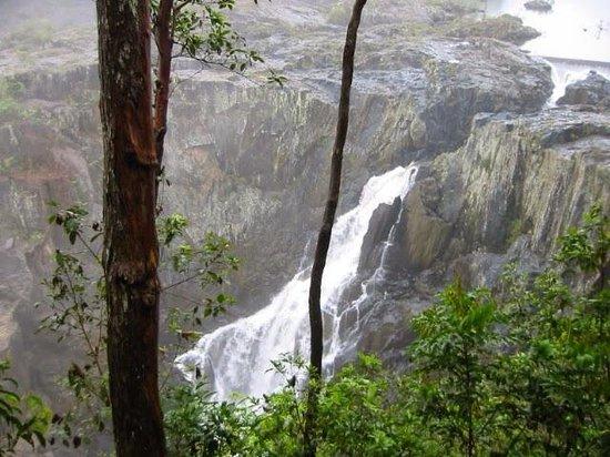 Barron Falls: 滝