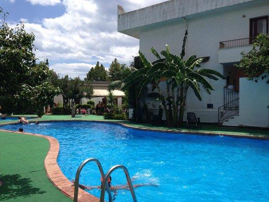 Assinos Palace Hotel : Piscina