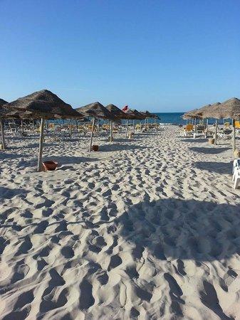Djerba Sun Club: La plage