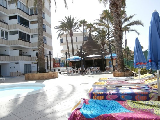 Koka Apartments: poolside/ poolside bar