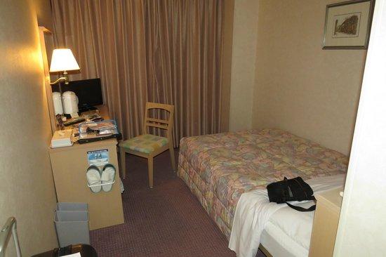 Washington Hotel Plaza: Room for one