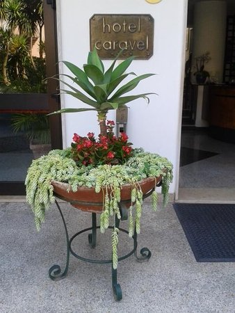 Hotel Caravel Sorrento: Entrance display