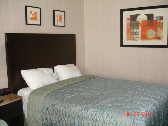 Circus Circus Hotel & Casino Las Vegas : The Room
