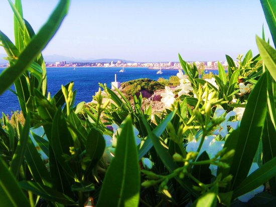 Blue Sea Arenal Tower: на море