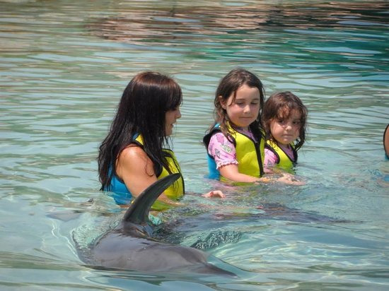 Aquaventure Waterpark: Swimming with the dolphins