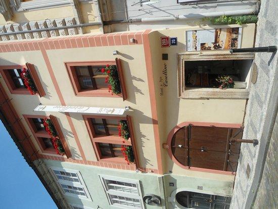 Hotel & Spa Carolline: hotel