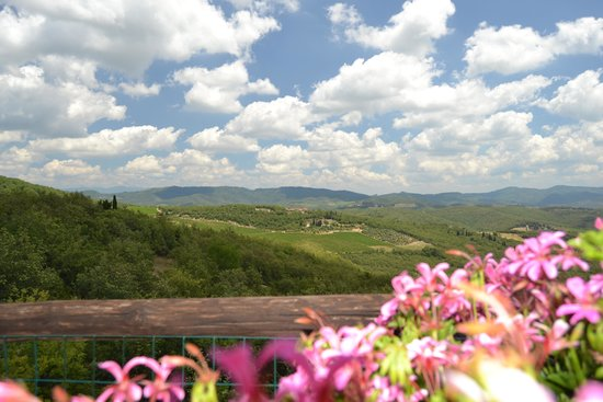 Casalvento Winery : View of the estate