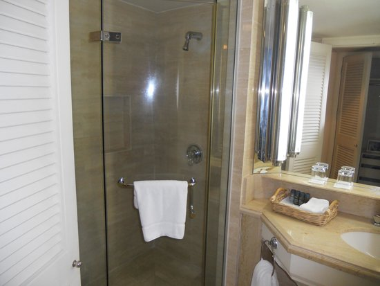 The Annabelle: Walk in shower with great pressure