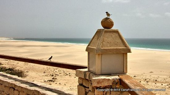 IBEROSTAR Club Boa Vista : Perched