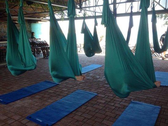 Siddhi Yoga: Meditating in the hammock ...!