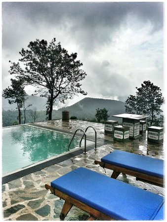 Madulkelle Tea and Eco Lodge: Pool