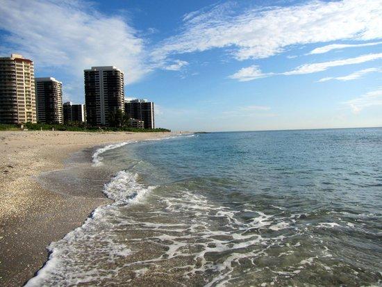 Palm Beach Marriott Singer Island Beach Resort & Spa : view from the hotel's beach