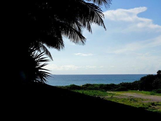 Palm Beach Marriott Singer Island Beach Resort & Spa : ocean view from the hotel outdoor areas