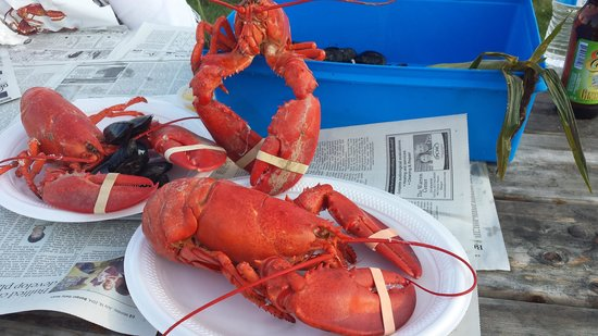 Travelin Lobster: Three's a crowd!!