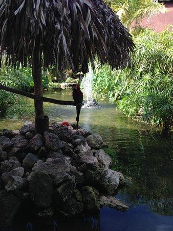 Bavaro Princess All Suites Resort, Spa & Casino: Entrée de l'hôtel