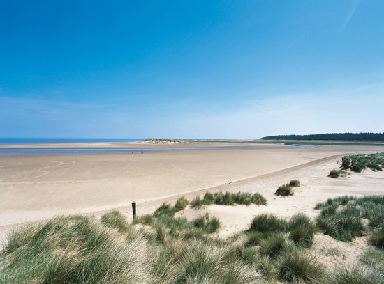 Holkham National Nature Reserve: Dunes,shallow tidal pools, golden sands backed by pinewoods