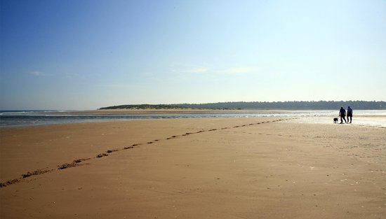 Holkham National Nature Reserve: Holkham Beach and National Nature Reserve