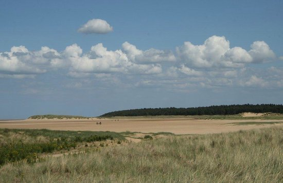 Holkham National Nature Reserve: View to the south
