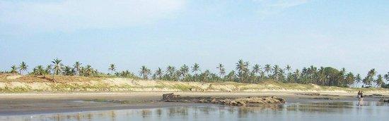 Morjim: Вид на побережье