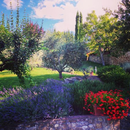 Dievole: Il giardino