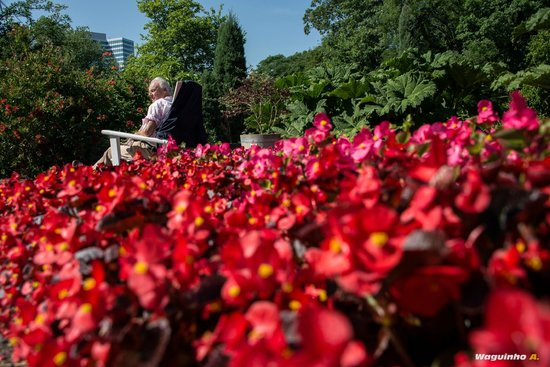 Planten un Blomen: Gardens
