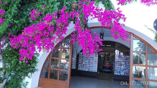 Creta Maris Beach Resort : hotel