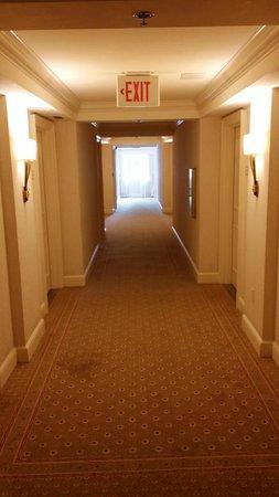 JW Marriott Miami: Hallway to rooms