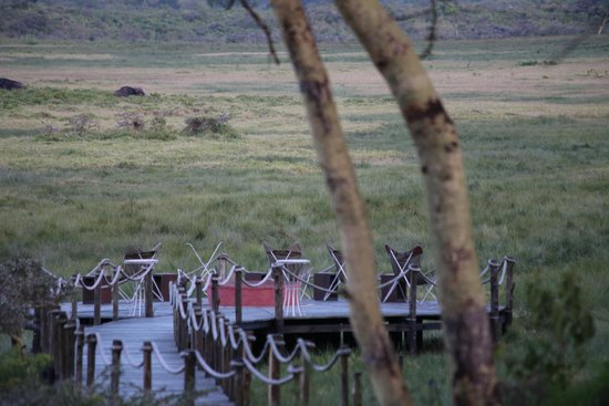 Hatari Lodge: view from the long porch