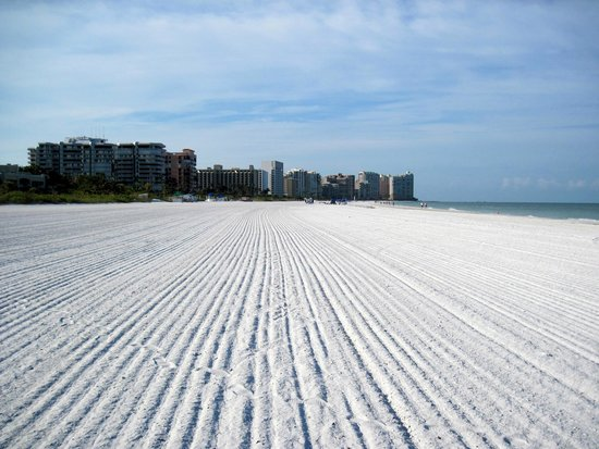 Marco Island Marriott Beach Resort, Golf Club & Spa: early morning at the beach